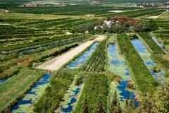 Dreieck des Flusses Neretva Stockfotos