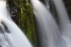 Dreifach-köpfiger Sol Duc Falls, olympischer Nationalpark, Washington Lizenzfreie Stockfotos