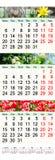 Dreifacher Kalender für März April und Mai 2017 mit Bildern Lizenzfreie Stockbilder
