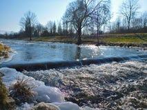 Dreisam congelado fotografia de stock