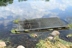 Dren de obstrucción de la salida del agua de la vegetación del lago Foto de archivo libre de regalías