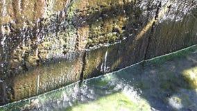 dren del agua almacen de metraje de vídeo