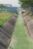 Drenażowych kanałów Betonowy pobocze Zdjęcia Royalty Free