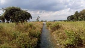 Drenaggio della raccolta di progetto di irrigazione per agricoltura Fotografia Stock