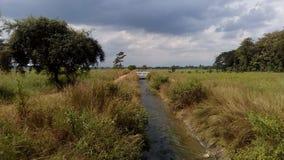 Drenaggio della raccolta di progetto di irrigazione per agricoltura Immagini Stock Libere da Diritti