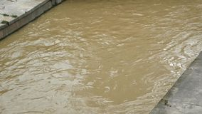 Drene la inundación metrajes