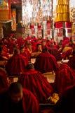 Drepung kloster som studerar munkar Lhasa Tibet Royaltyfria Foton