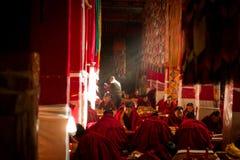 Drepung klostermunkar i solstrålar Lhasa Tibet Arkivbilder