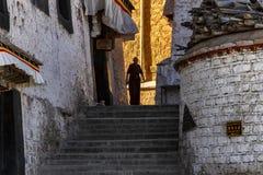 Drepung monaster w Tybet, Chiny zdjęcie royalty free