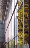 Dresde Bilding Image stock