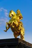 dresden goldener reiter fotografia royalty free