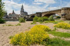 Dresden historical center. Dresden view featuring the Augustus bridge over Elbe riber Stock Photos