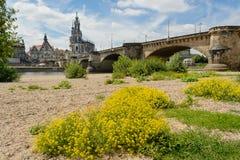 Dresden historisk mitt Arkivfoton
