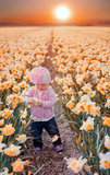 Little girl in narcissus field royalty free stock photography