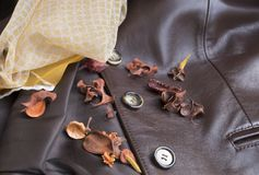 Dress in autumn. Preparation of the garments used in autumn when the heat disappears Royalty Free Stock Photography