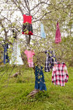 Dress tree. Tree with girl's colored dresses hanging on branches Stock Image