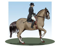 Dressage. Illustration of a rider and his horse making an exercise of dressage Royalty Free Stock Images