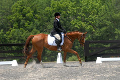 Dressage photographie stock libre de droits