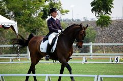 Dressage Competition  Royalty Free Stock Photo