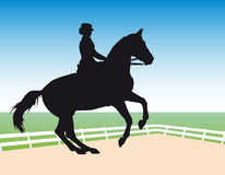dressage Fotografia Royalty Free