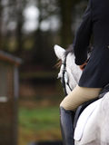 Dressage Abstract Stock Images