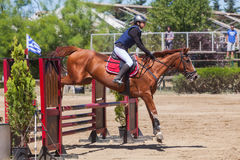 Dressage competitions Stock Images