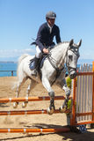 Dressage competitions Royalty Free Stock Photography