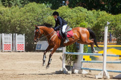 Dressage competitions Royalty Free Stock Photo