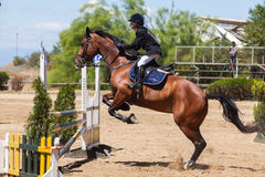 Dressage competitions Stock Photos