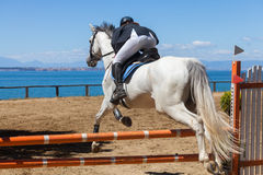 Dressage competitions Royalty Free Stock Image