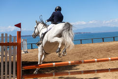 Dressage competitions Stock Photography