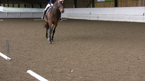 Dressage competitor performing stock video footage