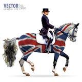 Dressage, das Pferdenspringen und Polopferde und -mitfahrer vector Schattenbilder Reiterinjockey im einheitlichen Reitpferd drauß lizenzfreie abbildung
