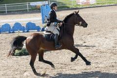 Dressage, das Pferdenspringen und Polopferde und -mitfahrer vector Schattenbilder Stockfotografie