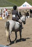 Dressage, das Pferdenspringen und Polopferde und -mitfahrer vector Schattenbilder Lizenzfreies Stockbild
