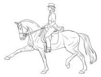Dressage del caballo de la mujer Fotografía de archivo libre de regalías