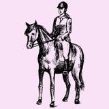 dressage equestrian końscy konie target491_1_ polo jeźdzów sylwetki bawją się wektor ilustracji