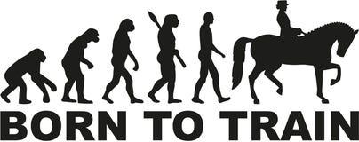 Dressage ewolucja urodzona trenować ilustracja wektor