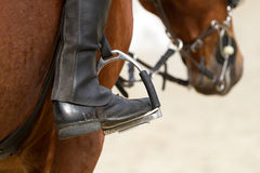 Dressage hors. E and a rider Stock Photo