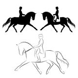 Dressage horse extended trot. Set of three variations of dressage  horse with rider performing extended trot Stock Photos