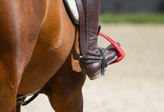 Dressage horse and  rider Stock Photos