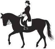 Dressage horse and rider. Equestrian sport horsewoman dressed for formality Stock Images
