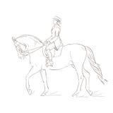 Dressage horse. Sketch on white background Royalty Free Illustration