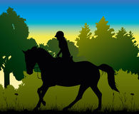 Dressage in the morning - silhouette Stock Images