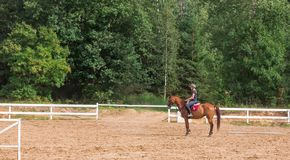 Young girl rider on a dressage in the park on a slender horse. royalty free stock photography