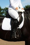 Dressage rider close up Stock Image