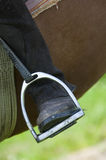 Dressage rider and horse closeup boot in stirrup detail Stock Image