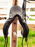 Dressage saddle at  the bracket. Royalty Free Stock Photo