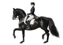 Dressage - schwarzes Pferd und Frau Lizenzfreies Stockbild