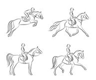 Dressage set. On a white background Stock Images